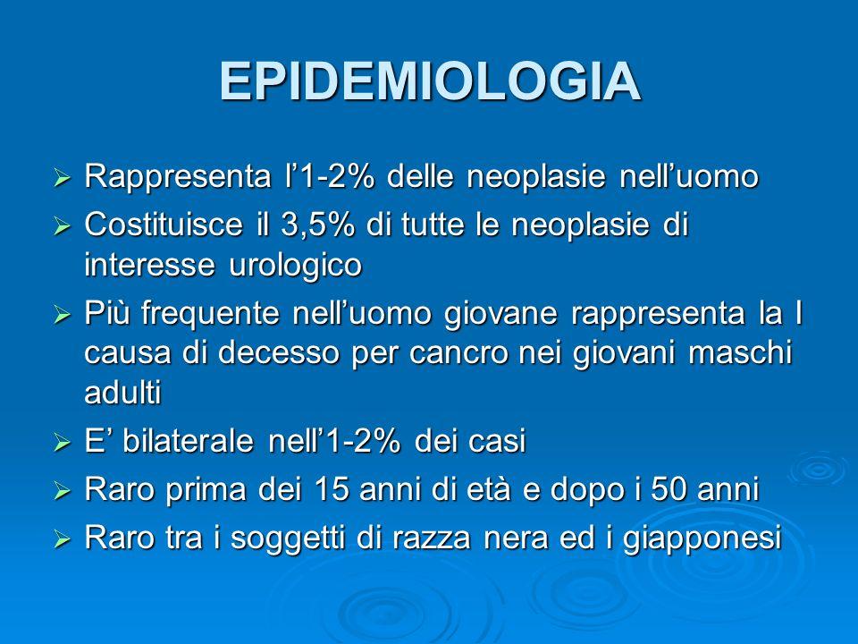 EPIDEMIOLOGIA Rappresenta l'1-2% delle neoplasie nell'uomo