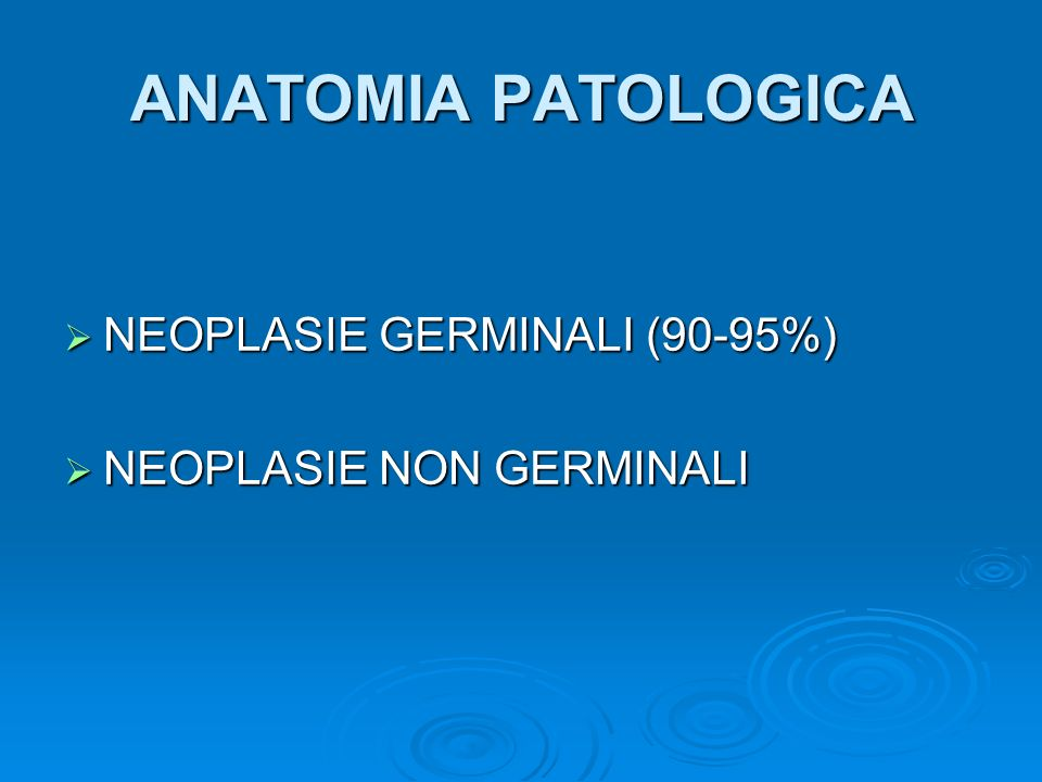ANATOMIA PATOLOGICA NEOPLASIE GERMINALI (90-95%)