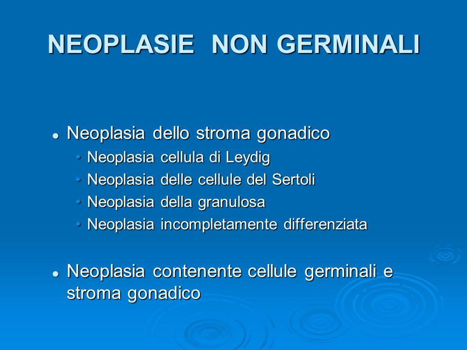 NEOPLASIE NON GERMINALI