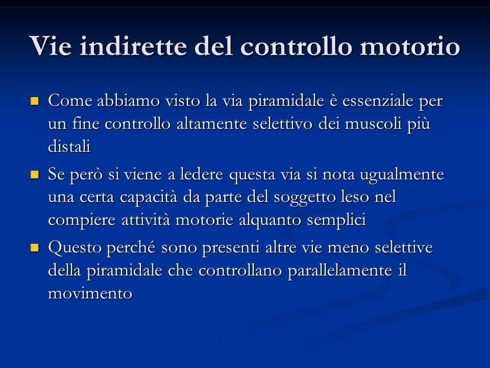 Vie indirette del controllo motorio