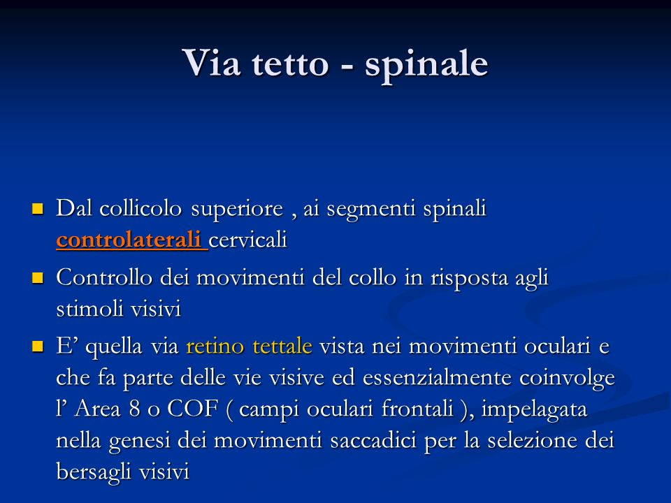 Via tetto - spinale Dal collicolo superiore , ai segmenti spinali controlaterali cervicali.
