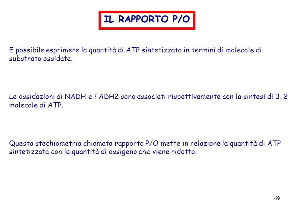 IL RAPPORTO P/O E possibile esprimere la quantità di ATP sintetizzato in termini di molecole di substrato ossidate.