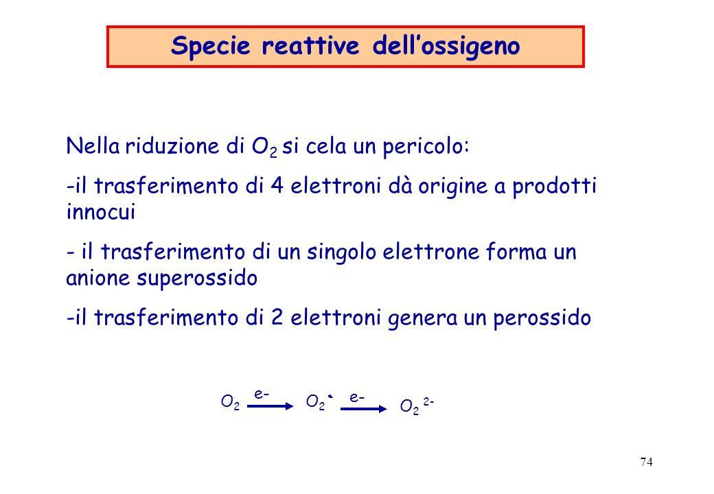Specie reattive dell'ossigeno