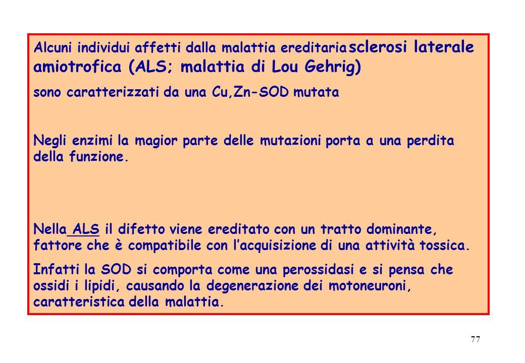 Alcuni individui affetti dalla malattia ereditaria sclerosi laterale amiotrofica (ALS; malattia di Lou Gehrig)