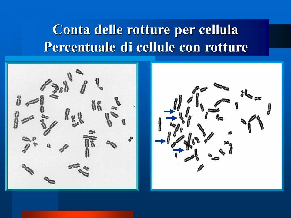 Conta delle rotture per cellula Percentuale di cellule con rotture