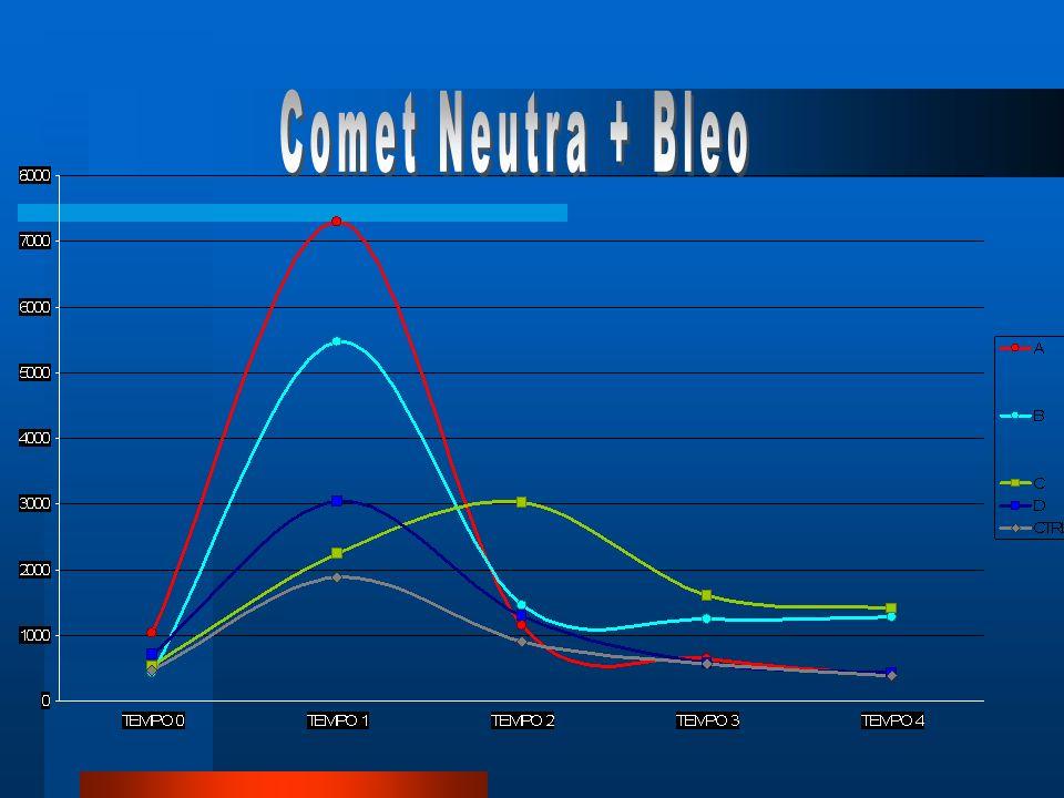 Comet Neutra + Bleo