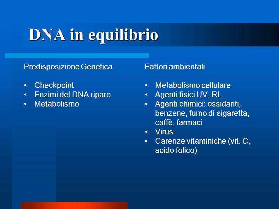 DNA in equilibrio Predisposizione Genetica Checkpoint
