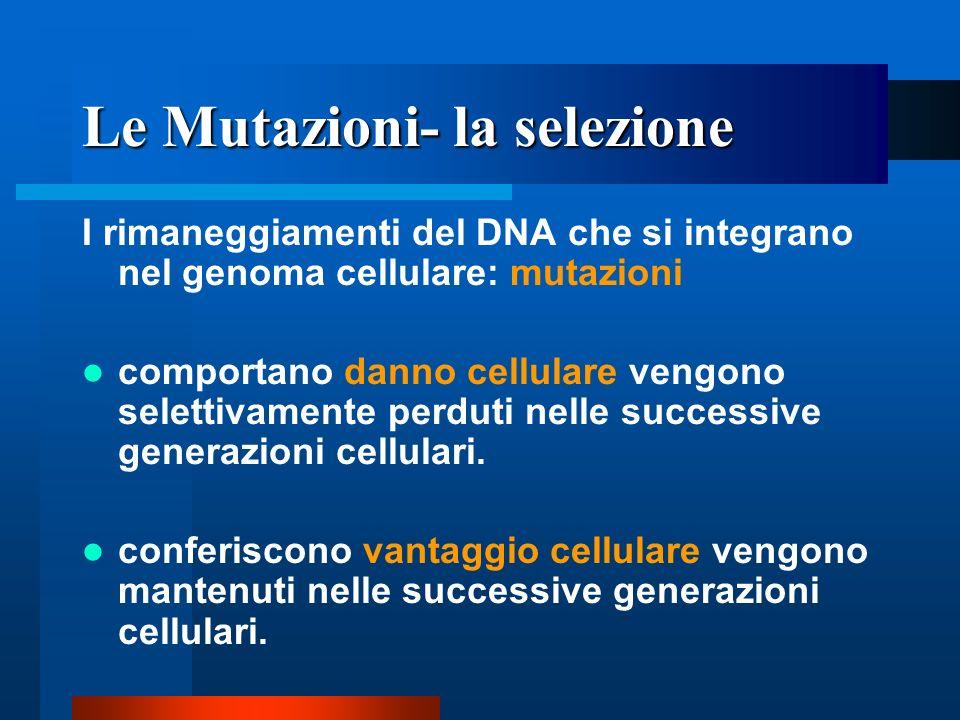 Le Mutazioni- la selezione