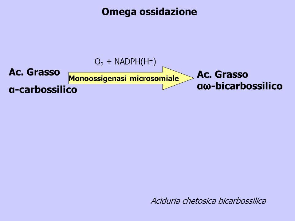 Monoossigenasi microsomiale