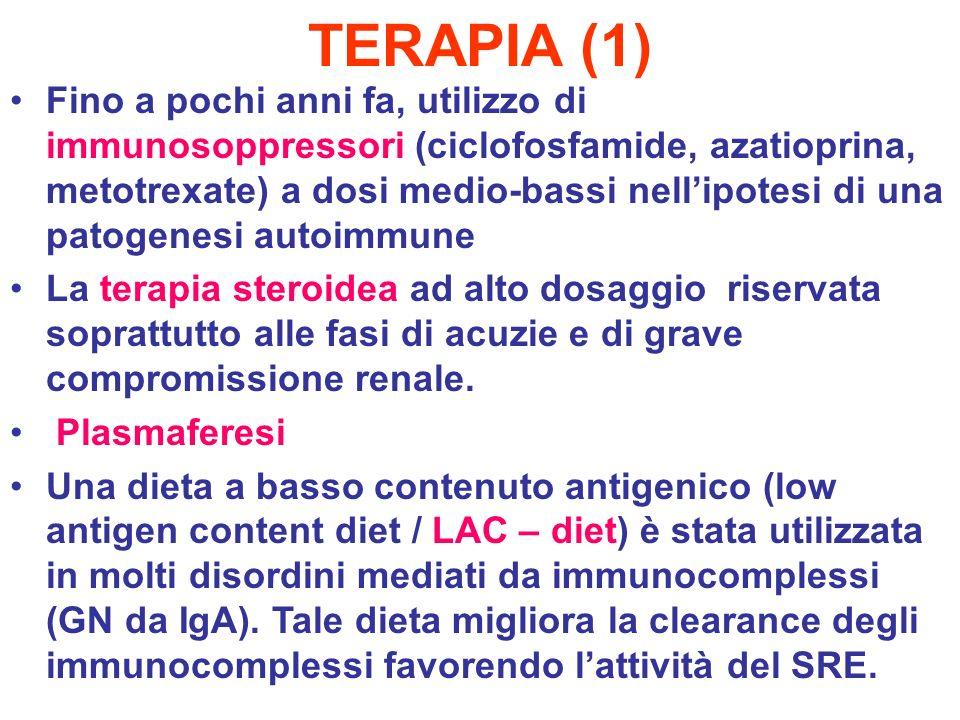 TERAPIA (1)