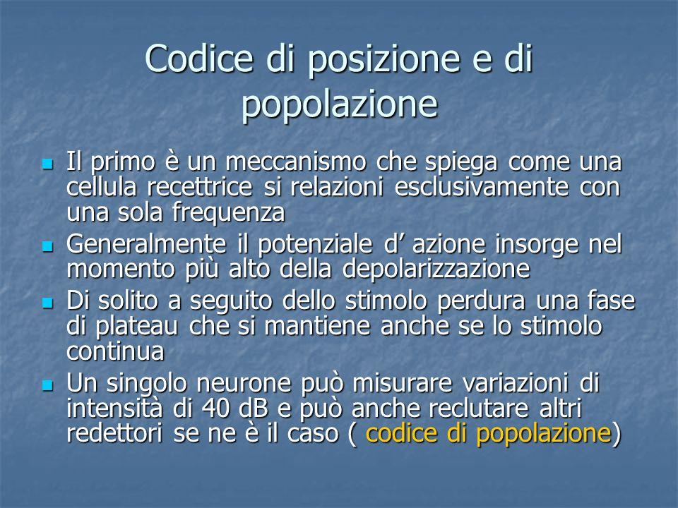 Codice di posizione e di popolazione