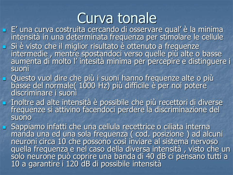 Curva tonale E' una curva costruita cercando di osservare qual' è la minima intensità in una determinata frequenza per stimolare le cellule.
