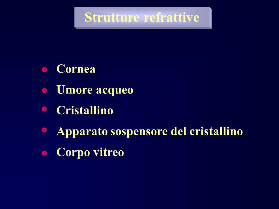 Strutture refrattive Cornea Umore acqueo Cristallino