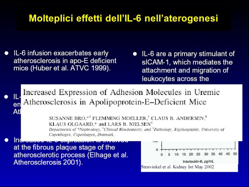 Molteplici effetti dell'IL-6 nell'aterogenesi