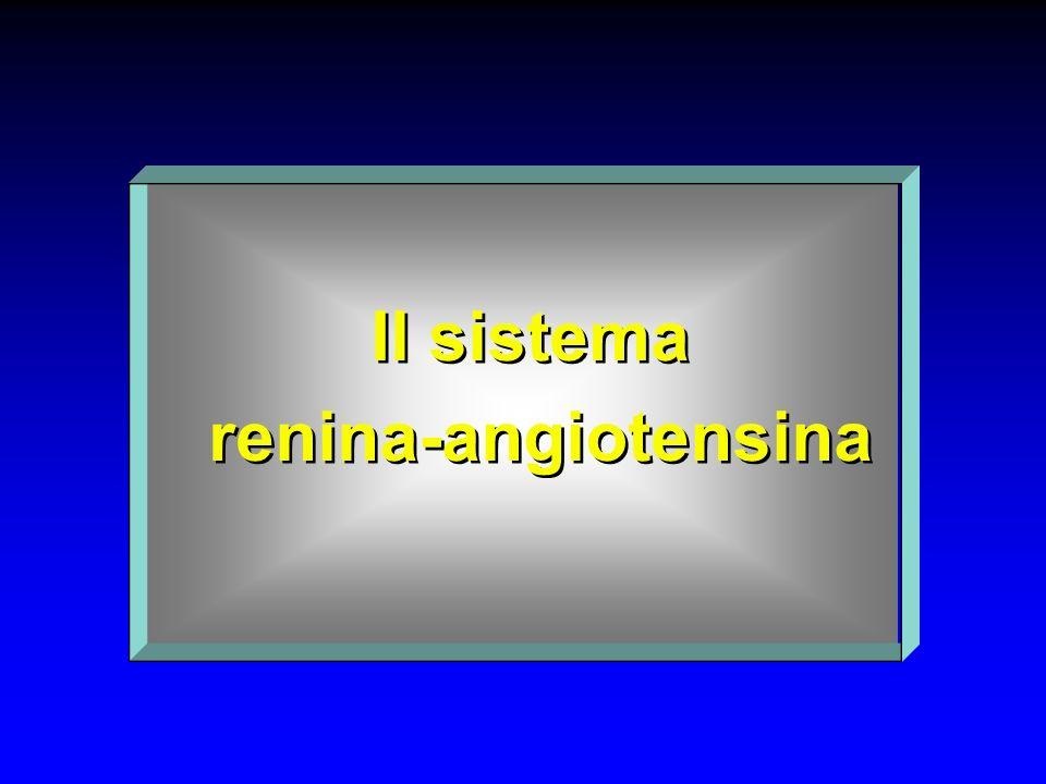 Il sistema renina-angiotensina