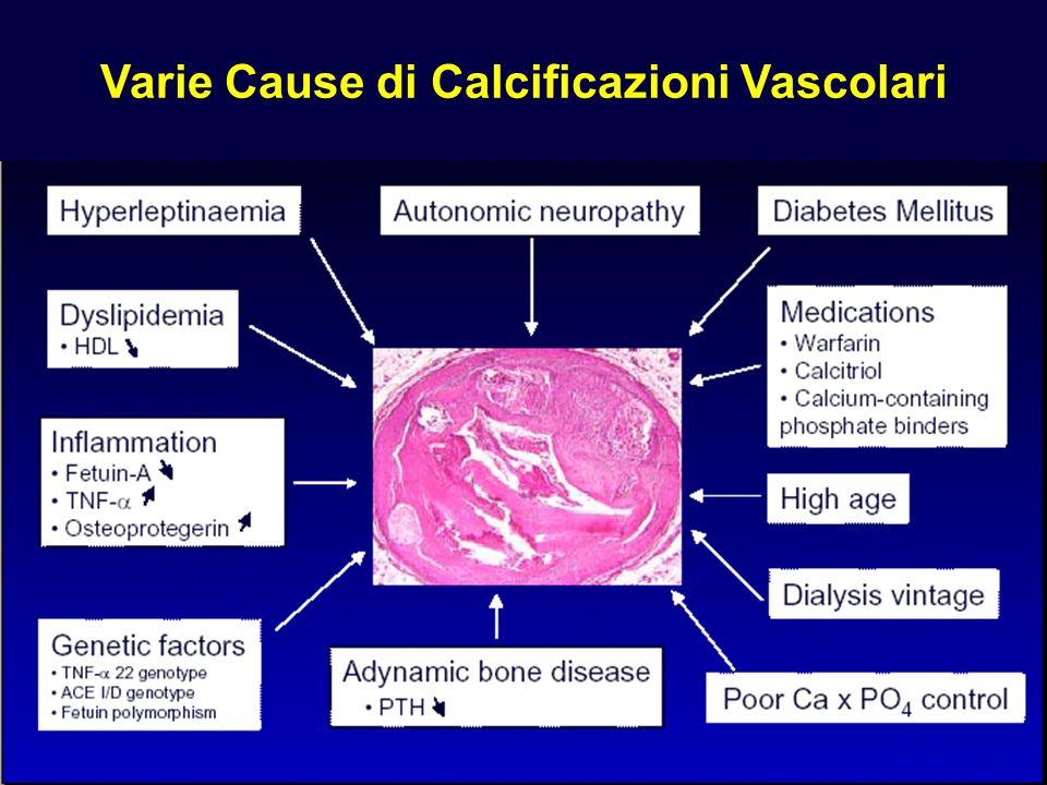 Varie Cause di Calcificazioni Vascolari