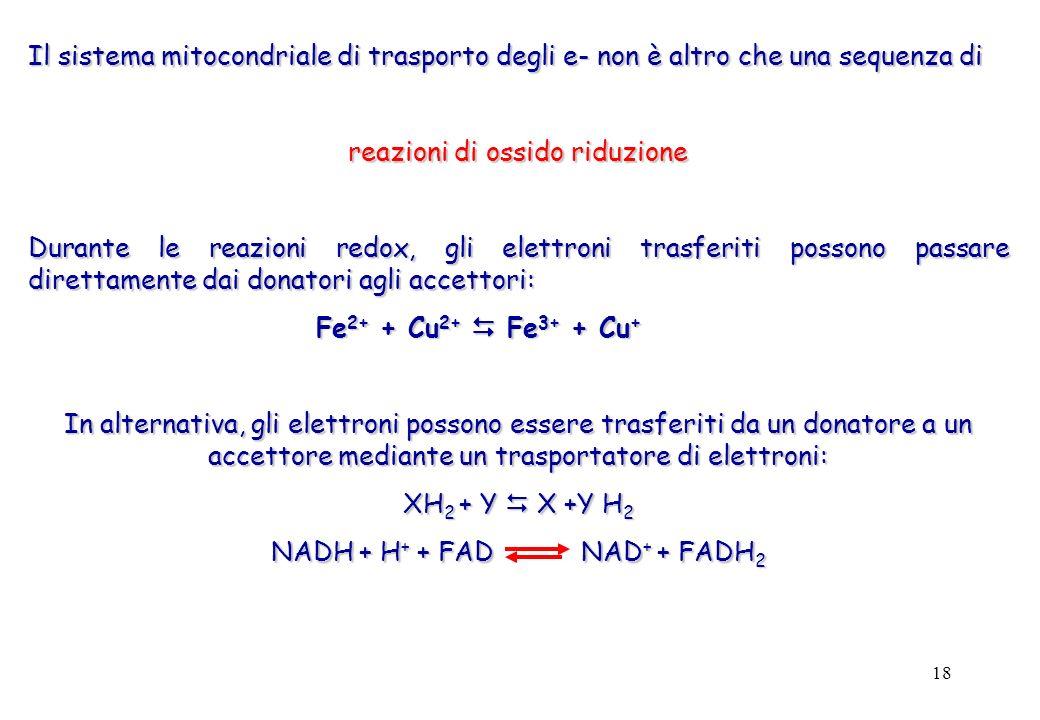 reazioni di ossido riduzione