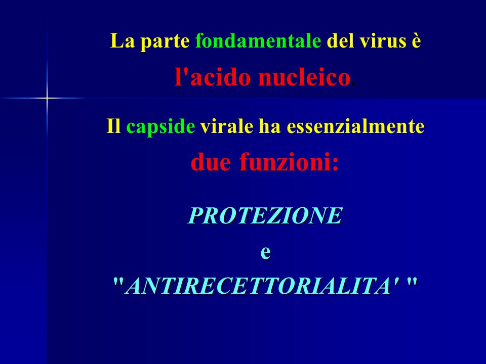 La parte fondamentale del virus è Il capside virale ha essenzialmente