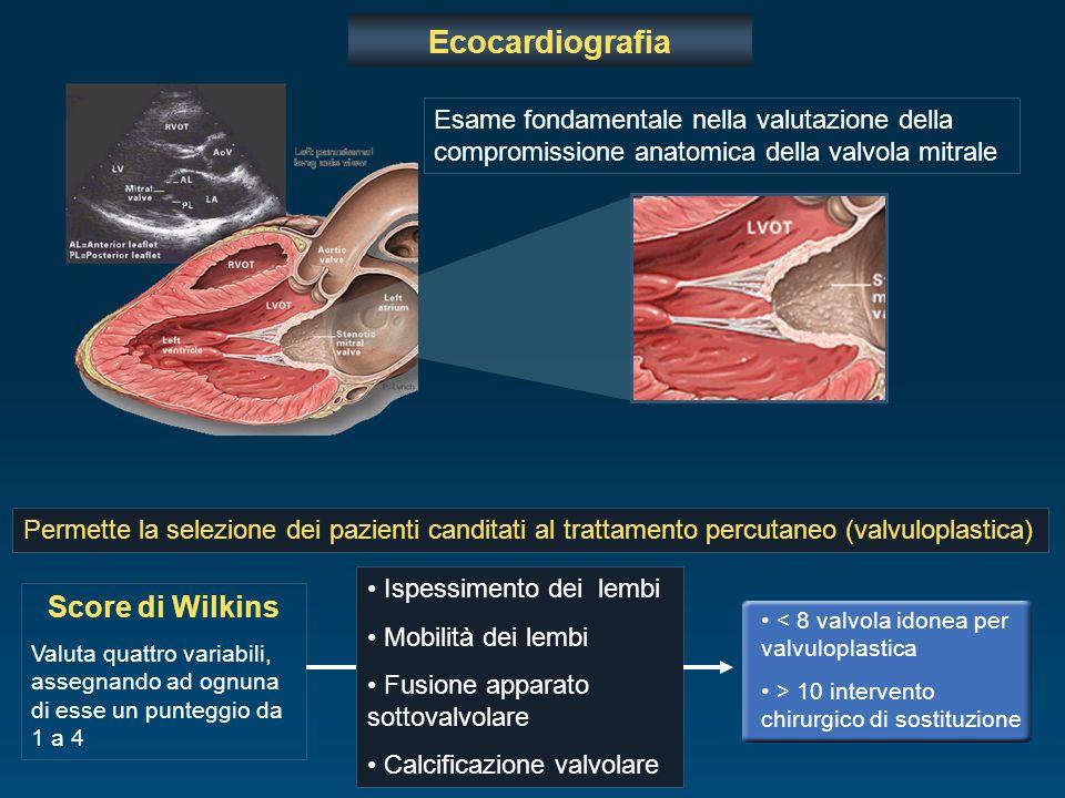 Ecocardiografia Score di Wilkins