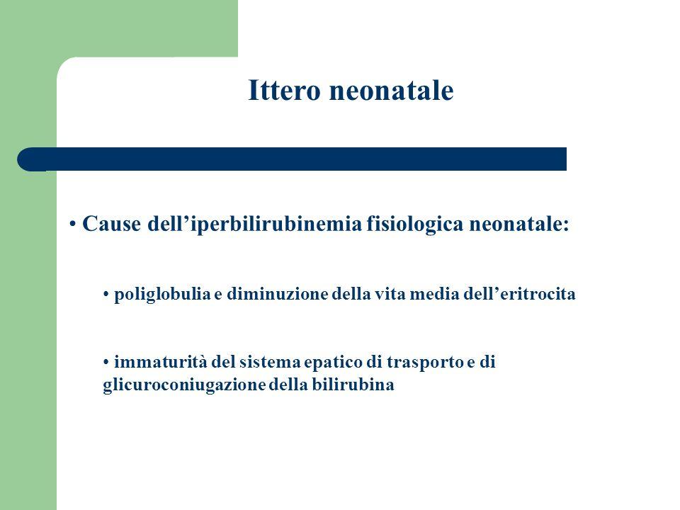 Ittero neonatale Cause dell'iperbilirubinemia fisiologica neonatale: