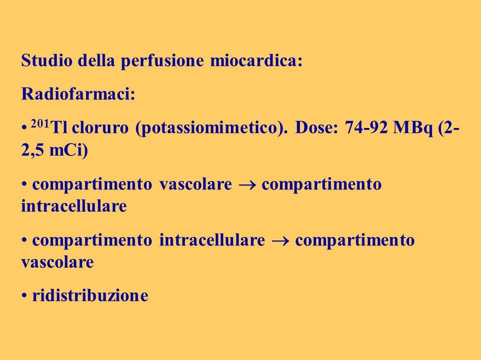 Studio della perfusione miocardica: