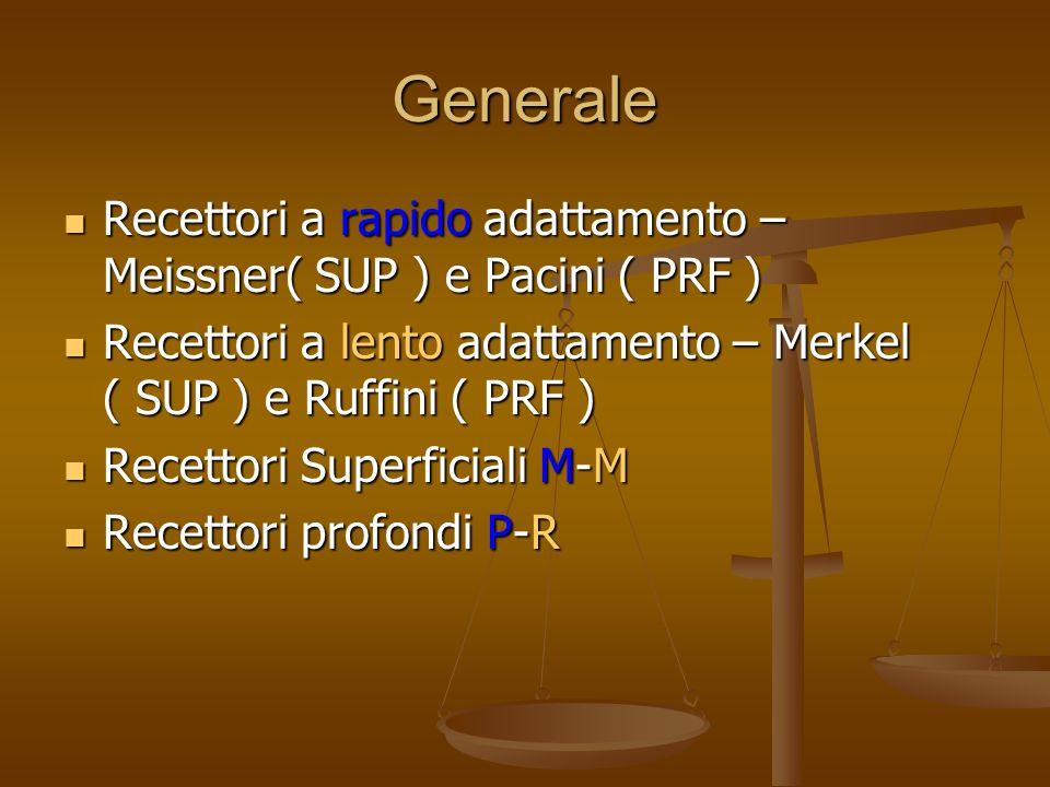 Generale Recettori a rapido adattamento – Meissner( SUP ) e Pacini ( PRF ) Recettori a lento adattamento – Merkel ( SUP ) e Ruffini ( PRF )