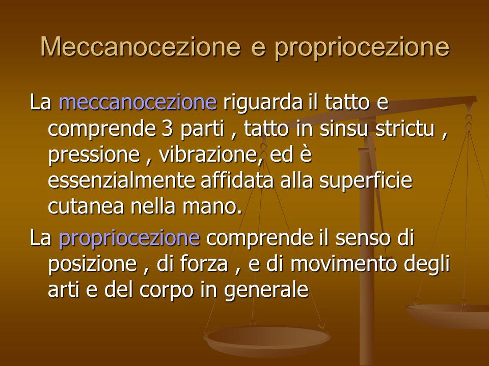 Meccanocezione e propriocezione