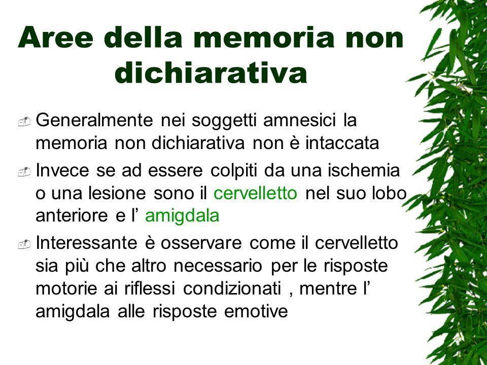 Aree della memoria non dichiarativa