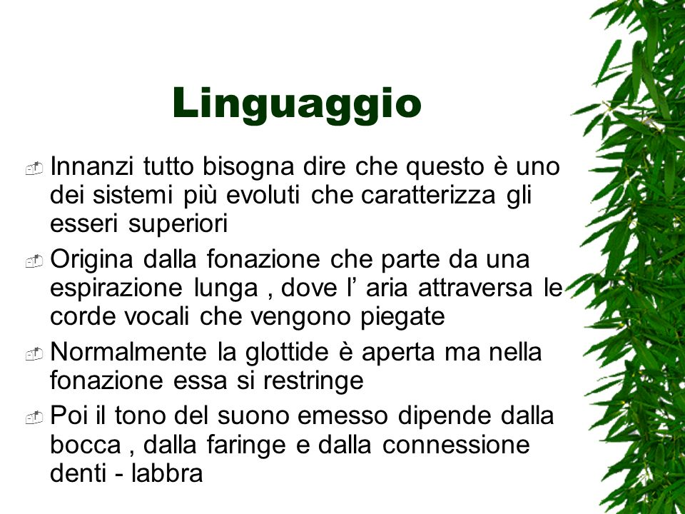 Linguaggio Innanzi tutto bisogna dire che questo è uno dei sistemi più evoluti che caratterizza gli esseri superiori.