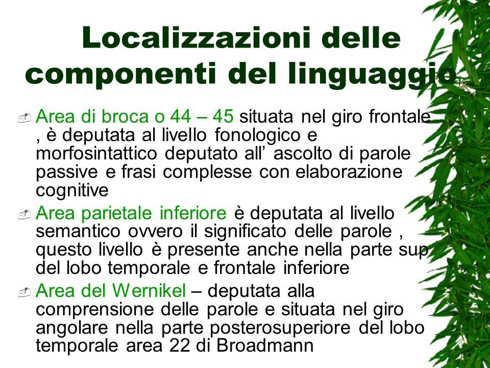 Localizzazioni delle componenti del linguaggio