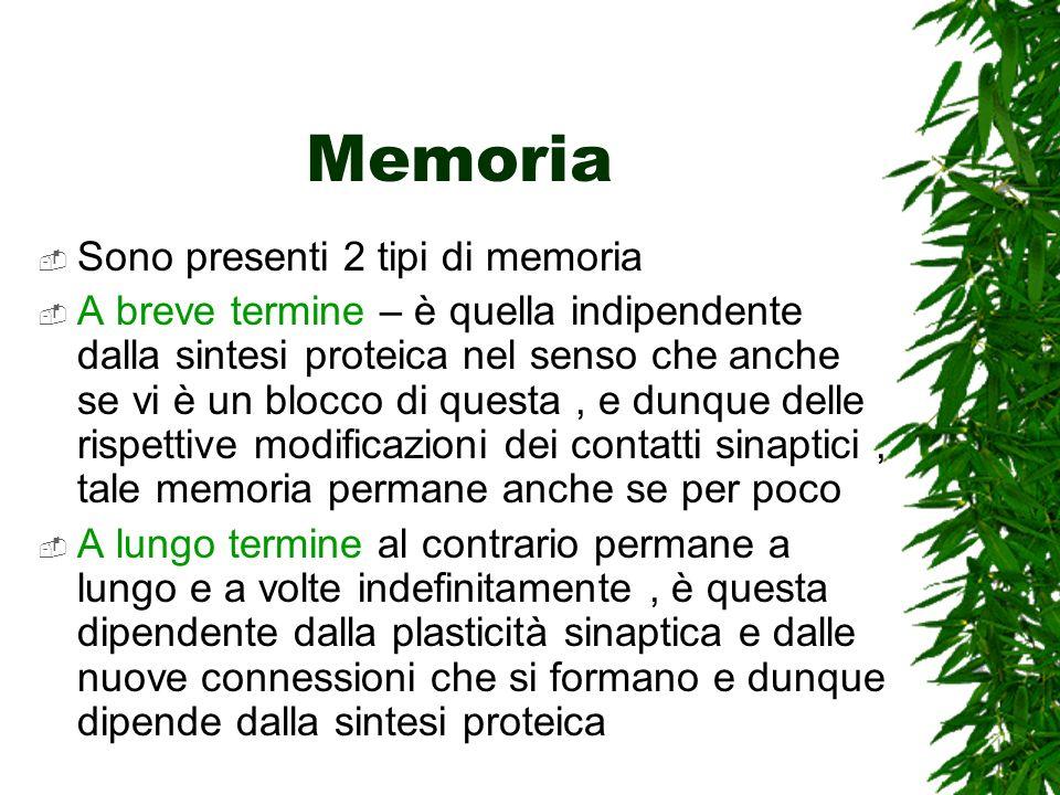 Memoria Sono presenti 2 tipi di memoria