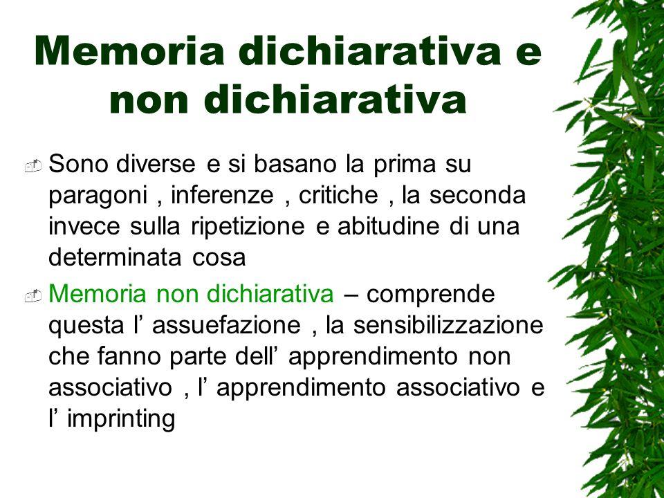 Memoria dichiarativa e non dichiarativa