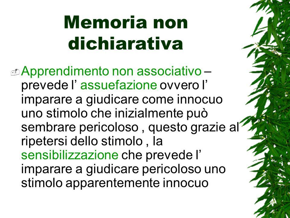 Memoria non dichiarativa