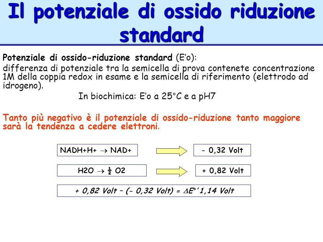Il potenziale di ossido riduzione standard
