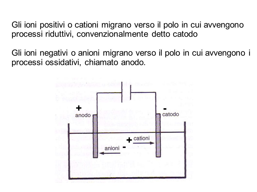 Gli ioni positivi o cationi migrano verso il polo in cui avvengono processi riduttivi, convenzionalmente detto catodo