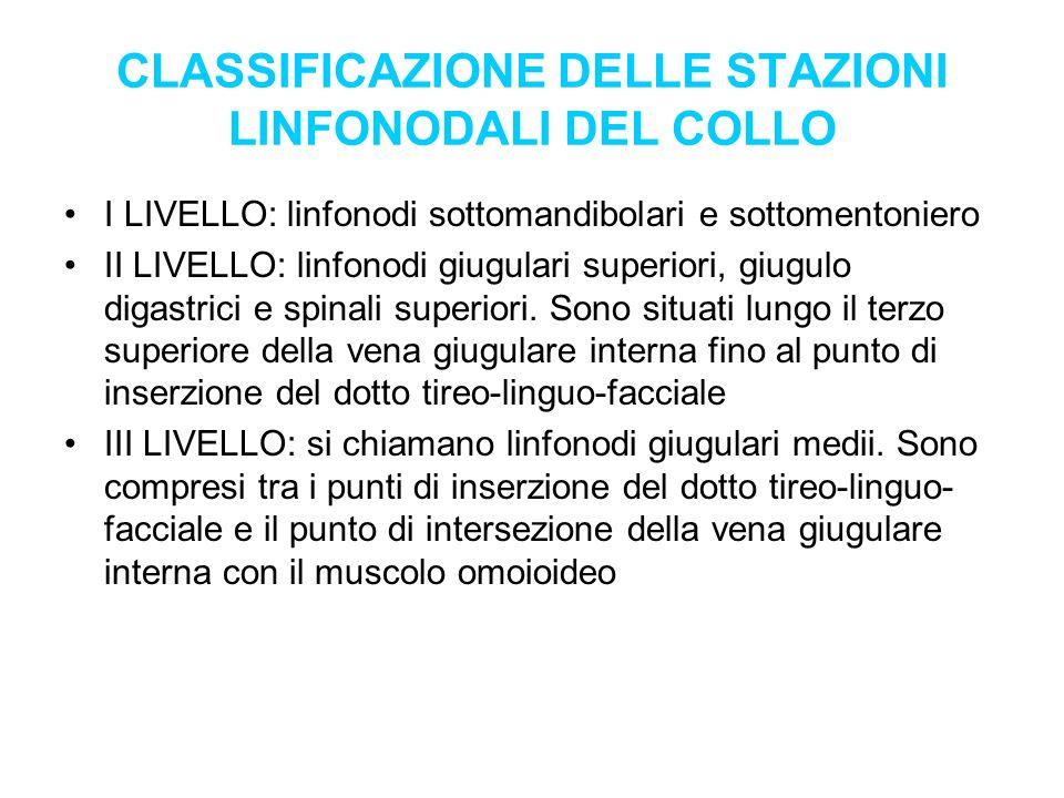 CLASSIFICAZIONE DELLE STAZIONI LINFONODALI DEL COLLO