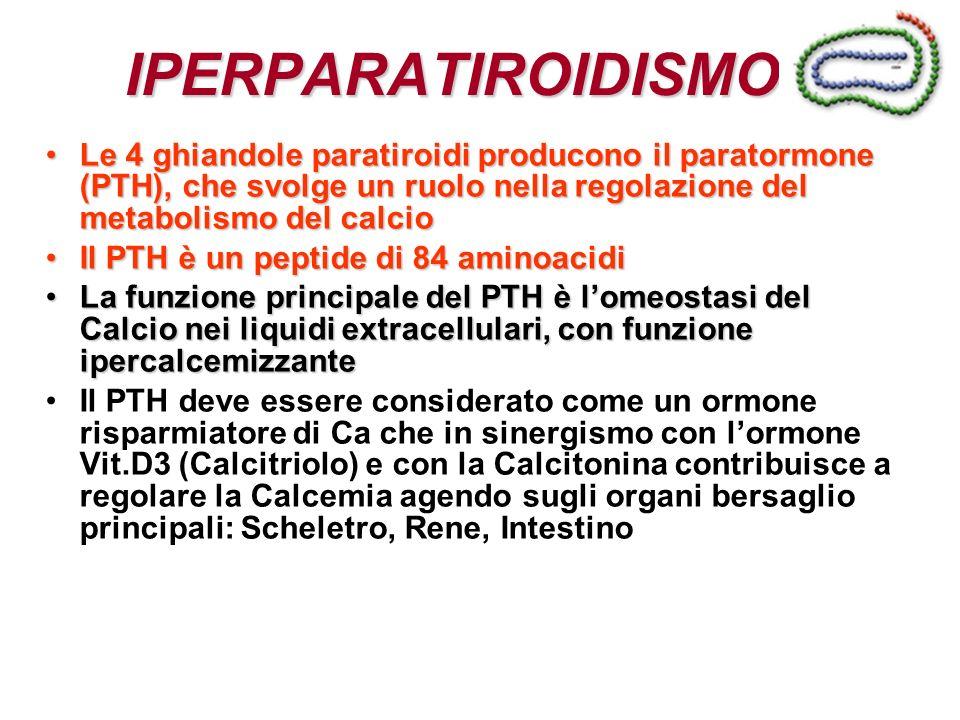 IPERPARATIROIDISMO Le 4 ghiandole paratiroidi producono il paratormone (PTH), che svolge un ruolo nella regolazione del metabolismo del calcio.