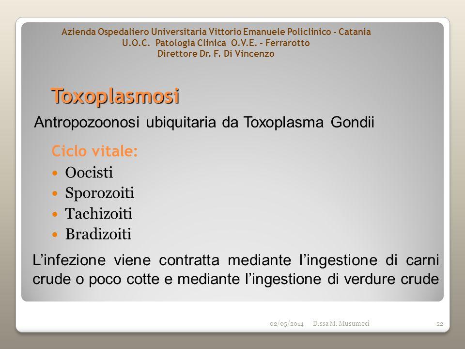 Toxoplasmosi Antropozoonosi ubiquitaria da Toxoplasma Gondii