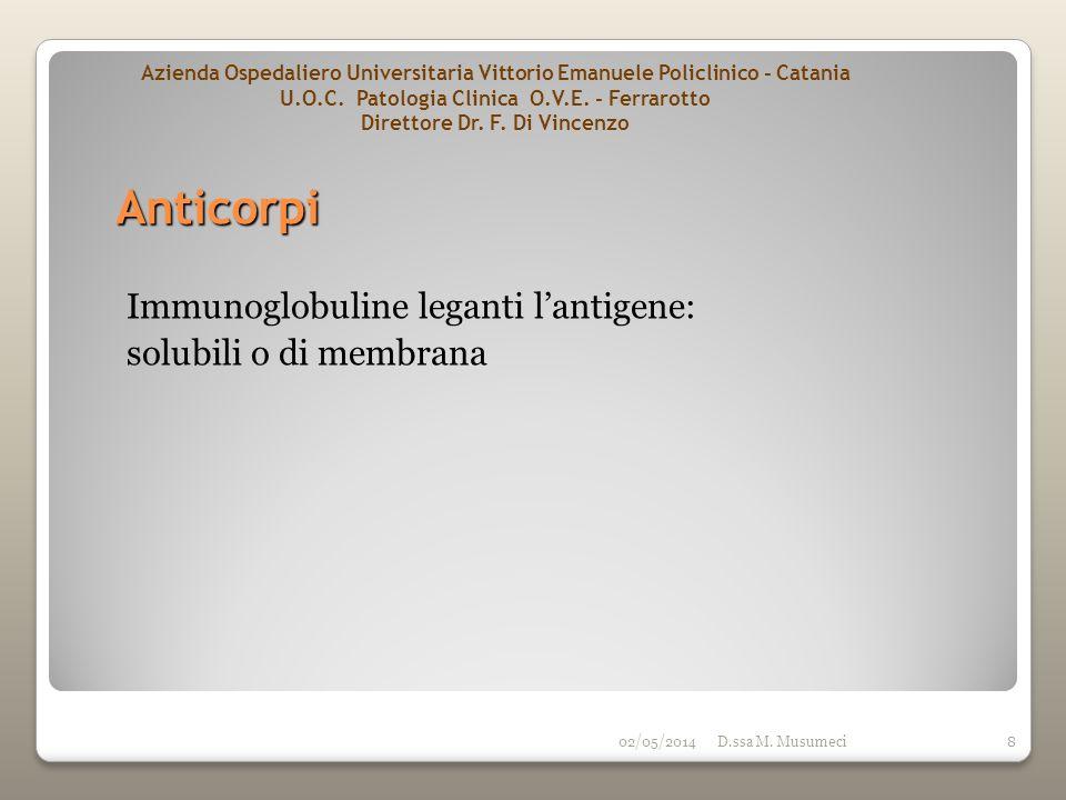 Anticorpi Immunoglobuline leganti l'antigene: solubili o di membrana