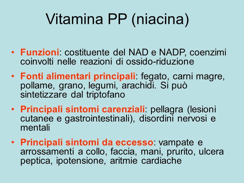 Vitamina PP (niacina) Funzioni: costituente del NAD e NADP, coenzimi coinvolti nelle reazioni di ossido-riduzione.