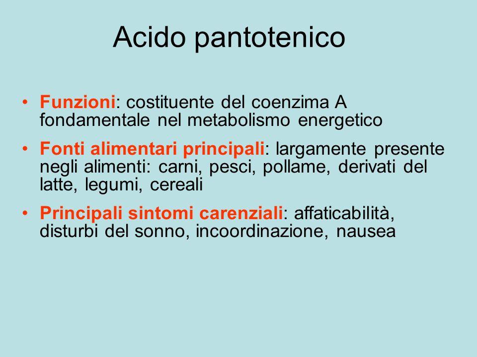 Acido pantotenico Funzioni: costituente del coenzima A fondamentale nel metabolismo energetico.