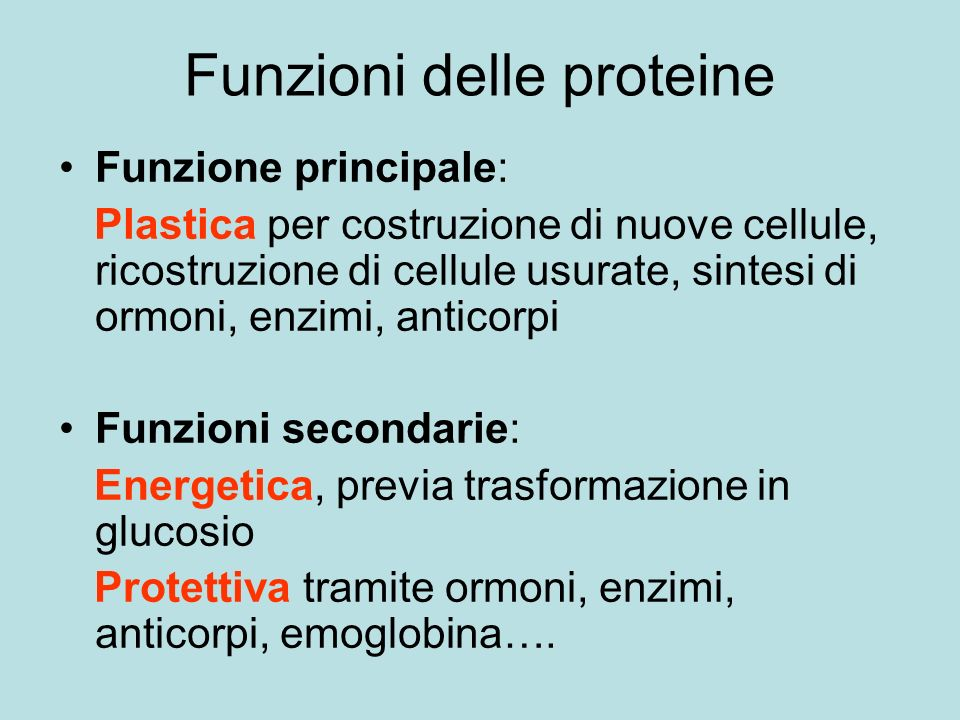 Funzioni delle proteine