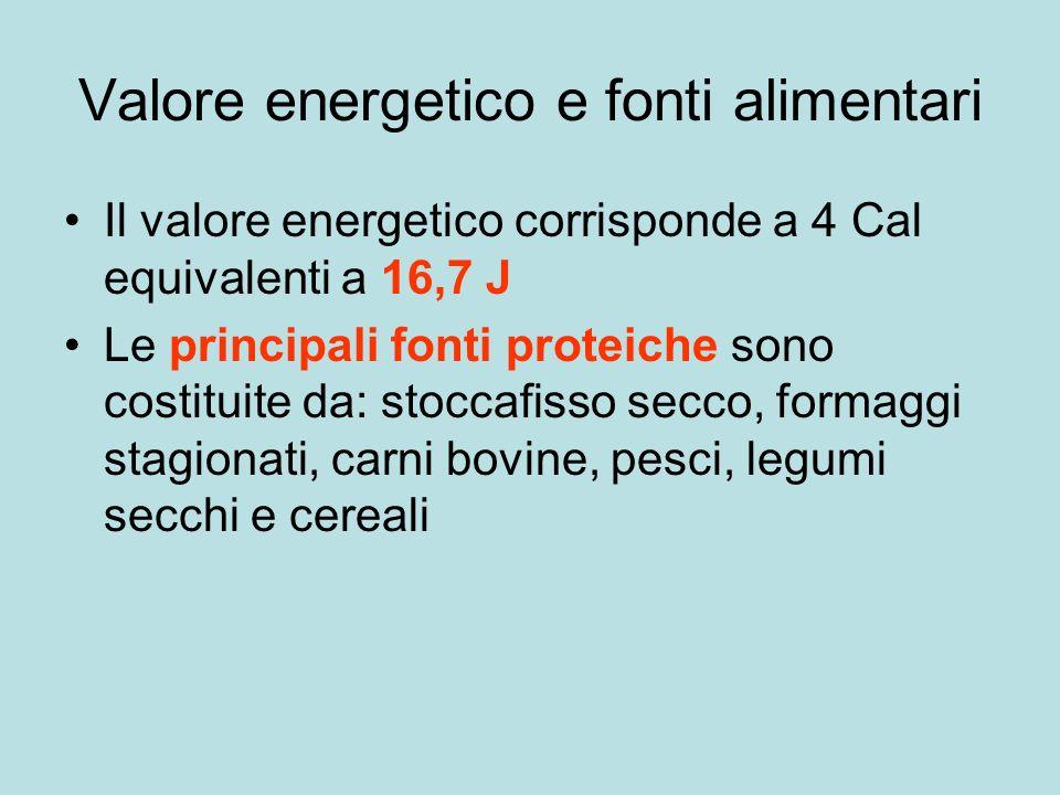 Valore energetico e fonti alimentari