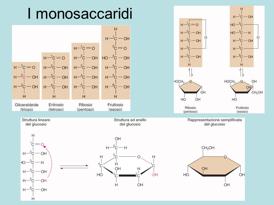 I monosaccaridi (C