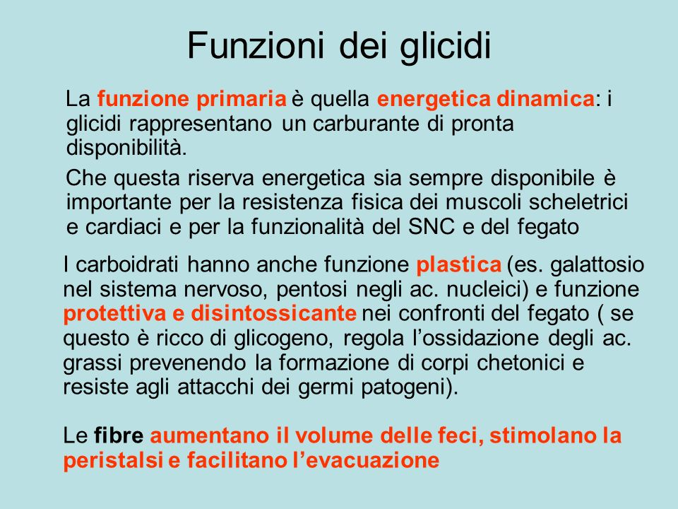 Funzioni dei glicidi La funzione primaria è quella energetica dinamica: i glicidi rappresentano un carburante di pronta disponibilità.