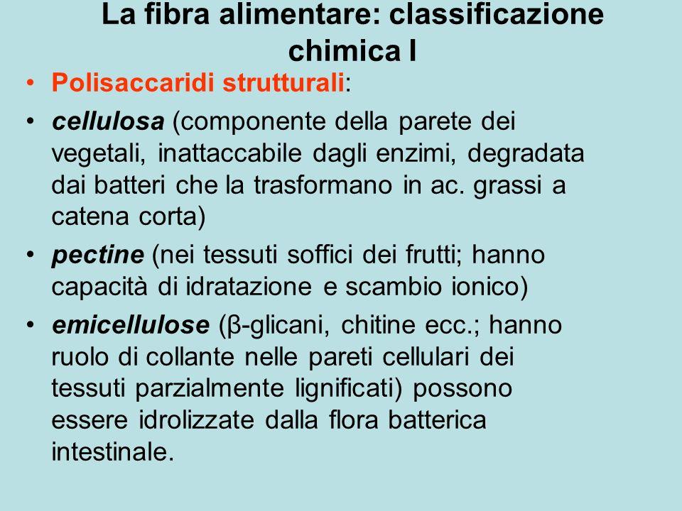 La fibra alimentare: classificazione chimica I