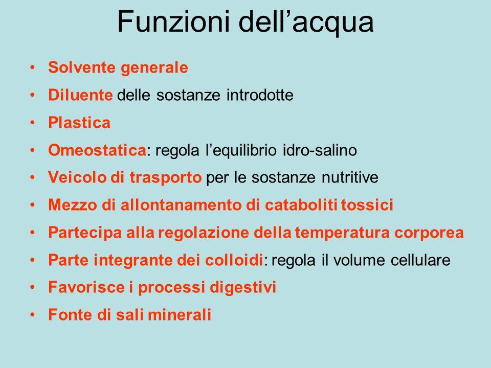 Funzioni dell'acqua Solvente generale
