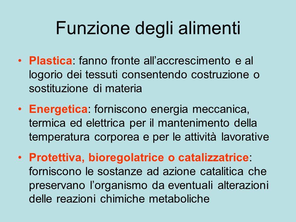 Funzione degli alimenti