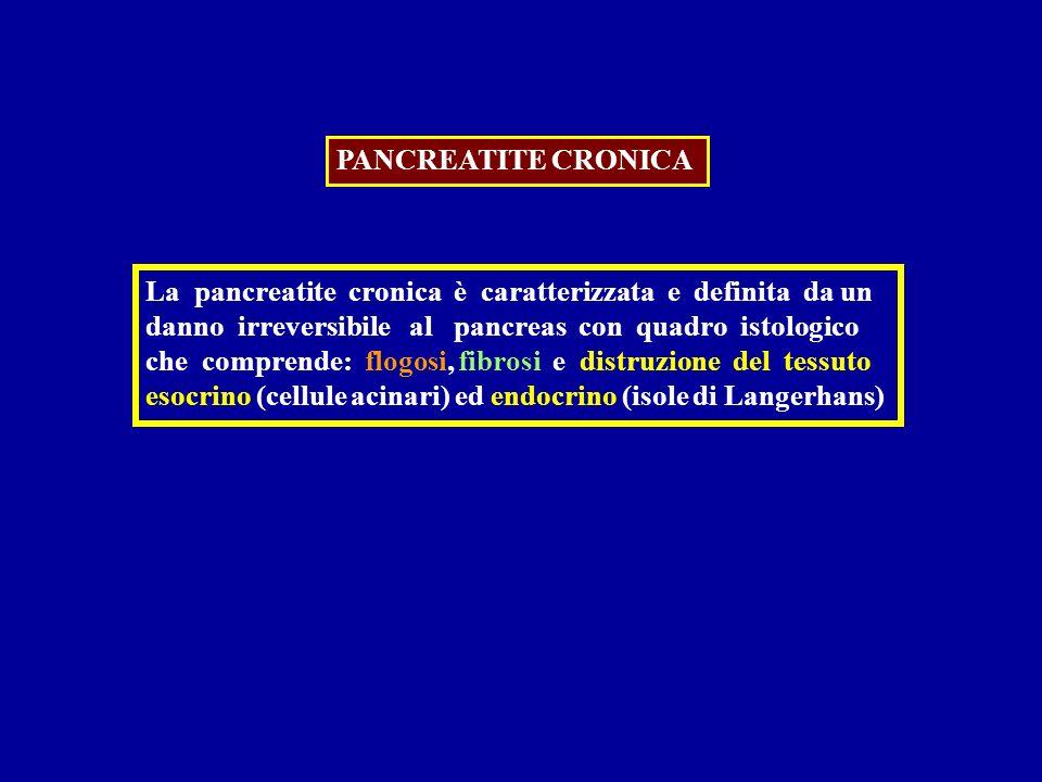 PANCREATITE CRONICA La pancreatite cronica è caratterizzata e definita da un. danno irreversibile al pancreas con quadro istologico.