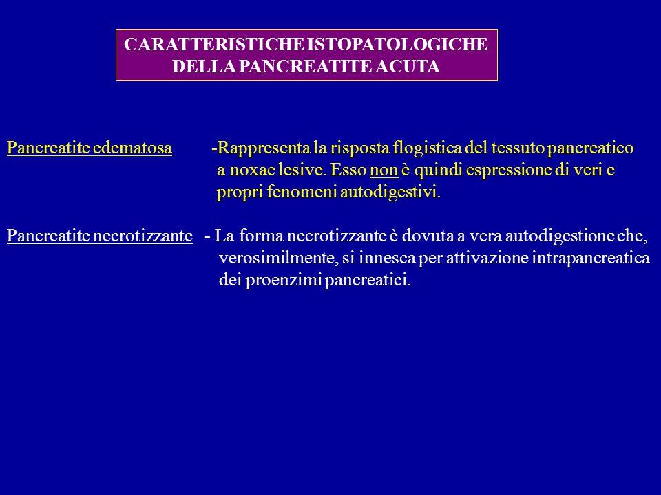 CARATTERISTICHE ISTOPATOLOGICHE DELLA PANCREATITE ACUTA